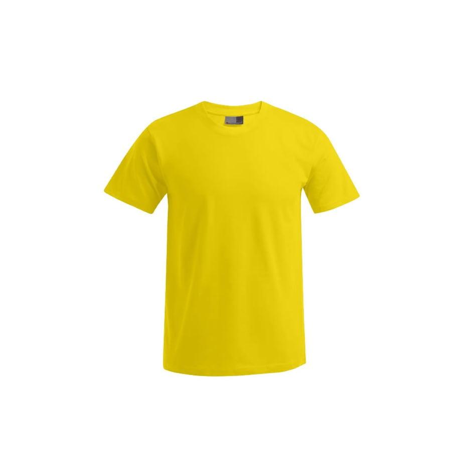 Męska koszulka Premium 3000/3099